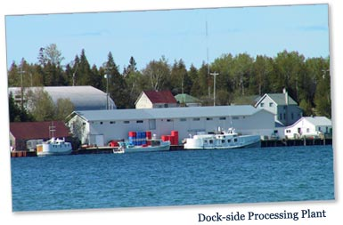 Photo: Dock-side Processing Plant